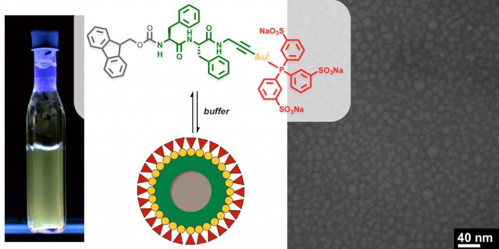 Publications | Besenius Lab - Supramolecular Functional Materials