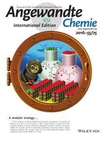 (28) Angew. Chem. Int. Ed. 2016, 55, 7265 (Cover)